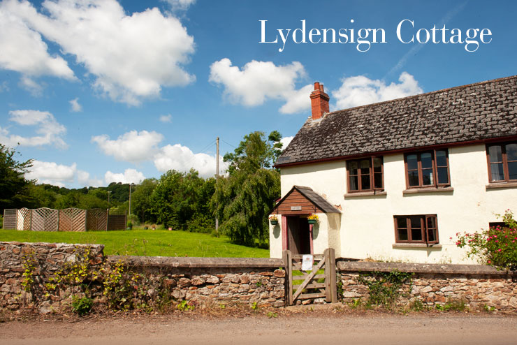 Lydensign Cottage, in the heart of the Blackdown Hills